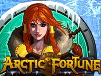 Платный автомат на деньги Arctic Fortune