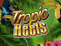 Играй на зеркале Вулкан в игровой аппарат Tropic Reels