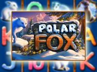 Silver Fox с зеркала Vulkan: реальный шанс выиграть джек-пот
